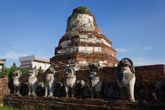 León de la pagoda y de la piedra Imagenes de archivo