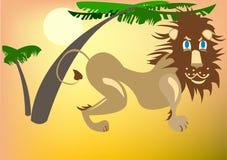 León debajo de las palmeras Foto de archivo