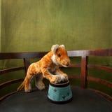 León del juguete en la arena Imagenes de archivo