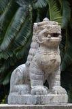 León del Nepali foto de archivo