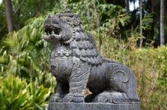León del Nepali fotos de archivo libres de regalías