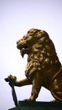 León del oro Fotos de archivo