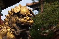 León del oro en la ciudad Prohibida, Pekín Fotografía de archivo libre de regalías