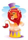 León en circo Foto de archivo libre de regalías
