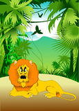 León en la selva Fotos de archivo