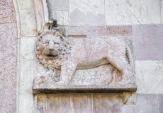 León esculpido magnífico en piedra rosada Imagenes de archivo