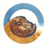 León pintado acuarela en un fondo redondo multicolor ilustración del vector