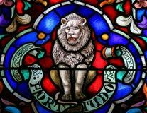 León, símbolo de la fuerza Foto de archivo