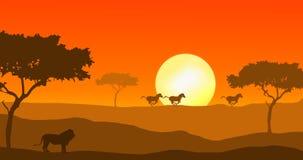León y cebra en puesta del sol stock de ilustración