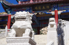 Leões chineses do guardião Imagem de Stock Royalty Free