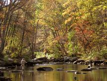 leć połowowego jesieni Zdjęcie Stock