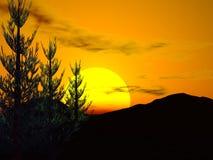 leśny słońca Obraz Royalty Free