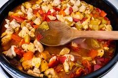 Le ¡ de Ð hicken le ragoût avec des légumes Photographie stock libre de droits