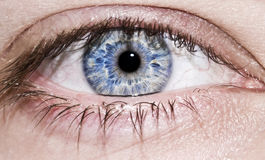 Le œil bleu de l'homme Image libre de droits