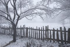 le 1 hiver d'horizontal photographie stock