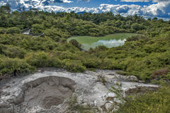 Le acque di balneazione di Hatupatu in valle geotermica del Distretto di Rotorua, Fotografia Stock Libera da Diritti