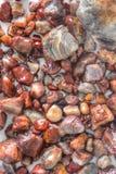 Le agate del lago Superiore sono la gemma dello stato del Minnesota fotografia stock libera da diritti