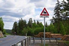 Le alci segnale di pericolo dentro la Norvegia Immagine Stock Libera da Diritti