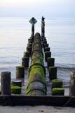 Le alghe hanno coperto il tubo Immagine Stock
