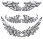 Le ali hanno impostato Fotografia Stock