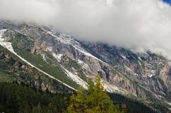 Le alpi Royalty-vrije Stock Foto