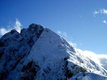 Le alpi Immagine Stock Libera da Diritti