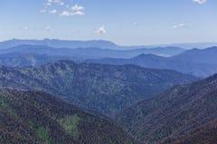 Le alpi australiane maestose vicino montano Hotham, Victoria, Australia Fotografie Stock
