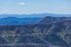 Le alpi australiane vicino montano Hotham, Victoria, Australia Fotografia Stock
