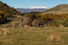 Le alpi del sud in Nuova Zelanda hanno coperto in neve Immagine Stock