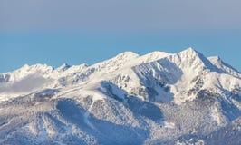 Le alpi della catena di montagna della neve abbelliscono Tirol del sud Italia Fotografie Stock Libere da Diritti