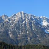 Le alpi di estate Fotografia Stock