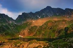 Le alpi di Transylvanian Fotografia Stock