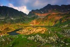 Le alpi di Transylvanian Fotografia Stock Libera da Diritti