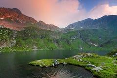 Le alpi di Transylvanian Fotografie Stock Libere da Diritti