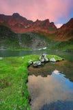 Le alpi di Transylvanian Immagini Stock