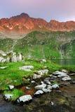 Le alpi di Transylvanian Immagini Stock Libere da Diritti