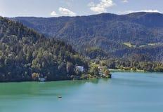 Le alpi ed il lago hanno sanguinato la vista aerea Fotografia Stock