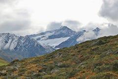 Le alpi nel Tirolo, Austria Immagini Stock Libere da Diritti