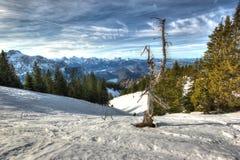Le alpi nell'inverno (vista dalla Tegelberg-montagna). Immagine Stock Libera da Diritti