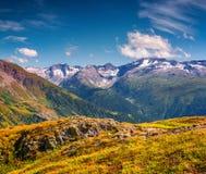 Le alpi svizzere innevate maestose dal Grimselpass Fotografie Stock Libere da Diritti