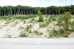 Le alte dune Immagini Stock Libere da Diritti