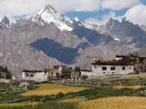 Le alte montagne sono un villaggio tibetano, vasti campi con orzo giallo, la gente in vestiti nazionali, file delle costruzioni b Immagini Stock