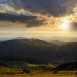 Le alte piante selvatiche alla montagna completano al tramonto Fotografie Stock Libere da Diritti
