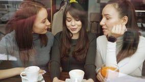 Le amiche delle donne in un caffè stanno avendo un divertimento che chiacchierano e che bevono le loro bevande Vista da dietro ve archivi video