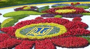 Le 20 août au poteau de Spevuche de ` le ` à Kiev a ouvert une exposition traditionnelle de 56 fleurs chronométrée à l'indépendan Images stock