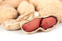Le arachidi si sono sparse su bianco Fotografia Stock
