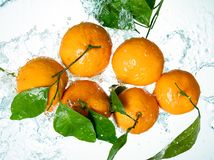 Le arance innaffiano la spruzzata immagine stock libera da diritti