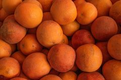 Le arance marocchine si trovano in un mucchio, arance fresche del fondo dell'alimento grandi Immagine Stock Libera da Diritti