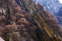 Le attrazioni turistiche famose nella provincia Cina, montagna di Shaanxi di Huashan Immagine Stock Libera da Diritti