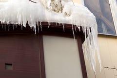 Le bâtiment couvert de grands glaçons de glaçons pendent du toit, stalactite verticale de glace pendant du courant ascendant pauv Photo libre de droits